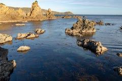 Baia dell'interruttore, Wellington immagini stock libere da diritti