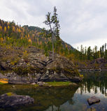 Baia della pietra del lago Teletskoe Fotografie Stock