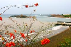 Baia della Praia in Capo Verde immagini stock libere da diritti