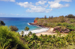 Baia della tartaruga, Kauai, HI Fotografia Stock