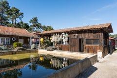 Baia di Arcachon, Francia, capanne dell'ostrica nel villaggio dell'ostrica di Le Canon Immagine Stock