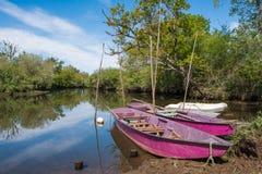 Baia di Arcachon, Francia, il fiume in Biganos Fotografia Stock Libera da Diritti