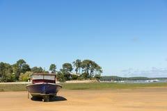 Baia di Arcachon, Francia, peschereccio tipico Immagini Stock Libere da Diritti