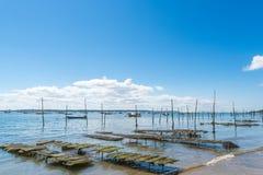 Baia di Arcachon, Francia, pezzo di terra coltivato a ostrica vicino a Cap Ferret Fotografie Stock
