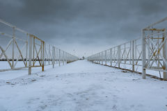 Baia di Freezed Petergof Immagini Stock