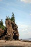 Baia di Fundy Fotografia Stock Libera da Diritti