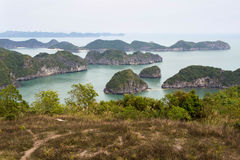 Baia di Halong veduta da Cat Ba Island, Vietnam Immagini Stock
