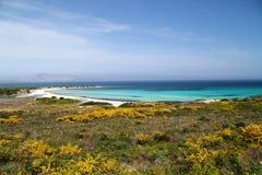 Baia di Isuledda, Sardegna Fotografie Stock