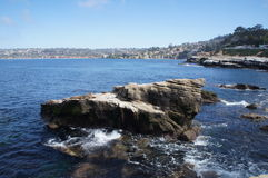 Baia di La Jolla - leoni marini su roccia Fotografie Stock Libere da Diritti
