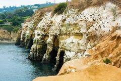 Baia di La Jolla - linea costiera - argini Fotografia Stock Libera da Diritti