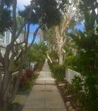 Baia di missione, San Diego, CA fotografie stock libere da diritti