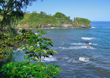Baia di Onomea in Hawai Fotografia Stock Libera da Diritti