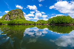 Baia di Phang Nga Immagine Stock
