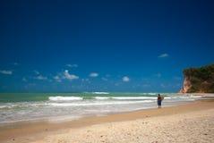 Baia dos Golfinhos near pipa Brazil Stock Image