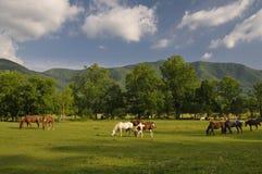 Baia fumosa di Cades delle montagne in primavera tarda Fotografie Stock Libere da Diritti