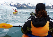 Baia Kayaking di Aialik, sosta nazionale AK dei fiordi di Kenai Immagini Stock Libere da Diritti