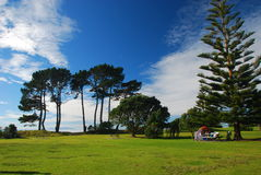 Baia lunga Prak, Auckland, Nuova Zelanda fotografie stock libere da diritti