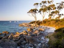 Baia Tasmania di Binalong Fotografia Stock Libera da Diritti