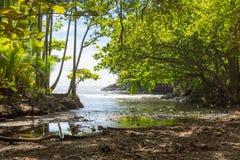 Baie cachée naturelle près d'un jardin botanique sur la grande île, Hawaï Photos stock