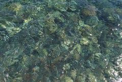Baie d'Amoudi Photos stock