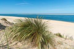 Baie d'Arcachon, France : le petit gentil de plage devant la banque de sable d'Arguin et pr?s de la dune de Pilat image libre de droits