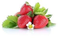 Baie de baie de fraises de fraise avec des feuilles d'isolement Photographie stock libre de droits
