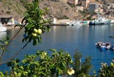 Baie de Balaklava, Crimée Photographie stock libre de droits