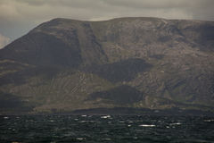 Baie de Bantry, liège occidental Image stock