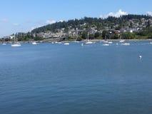 Baie de Bellingham dans le jour d'été Image libre de droits
