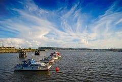 Baie de Cardiff Images libres de droits