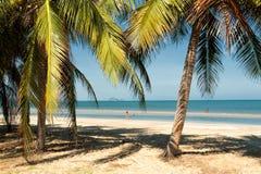 Baie de dauphin, Thaïlande Photos libres de droits