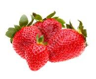 Baie de fraises d'isolement sur le fond blanc Photos stock