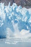 Baie de glacier Photo libre de droits