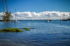 Baie de Hilo Photographie stock