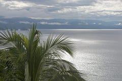 Baie de l'océan pacifique avec le palmier image libre de droits