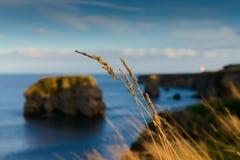 Baie de Marsden Photographie stock