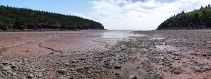 Baie de parc national de Fundy Image libre de droits