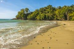Baie de Parlatuvier au Tobago Image libre de droits