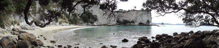 Baie de pastenague en Nouvelle Zélande Image libre de droits