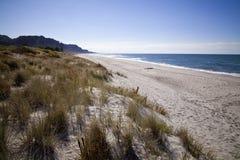 Baie de plage d'abondance, Nouvelle-Zélande Photographie stock libre de droits