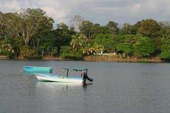 Baie de Puerto Jimenez Photos libres de droits
