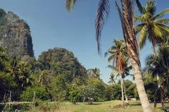 Baie de Railay en Thaïlande Photographie stock libre de droits