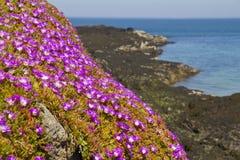 Baie de Rozel, t Martins, débardeur, Îles Anglo-Normandes, Royaume-Uni photographie stock