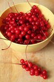 Baie de saveurs chinensis ou cinq de Schisandra Image stock