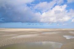 Baie de Somme in Francia immagine stock libera da diritti