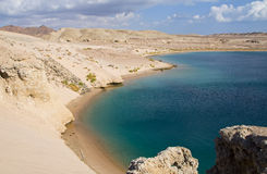 Baie de tortue en Egypte photo libre de droits