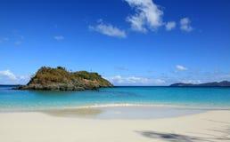 Baie de tronc en St John Images libres de droits