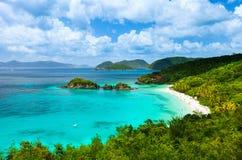 Baie de tronc sur l'île de St John, Îles Vierges américaines Images stock