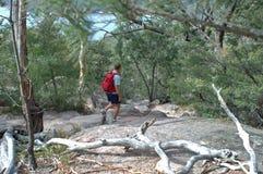 Baie de verre à vin, Tasmanie 7 novembre 2005 : Le randonneur marche photographie stock