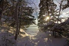 Baie des chaleurs κοντά στη θάλασσα Στοκ εικόνες με δικαίωμα ελεύθερης χρήσης